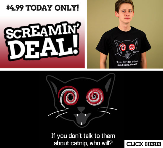 IF YOU DON'T TALK TO THEM ABOUT CATNIP, WHO WILL? T-SHIRT